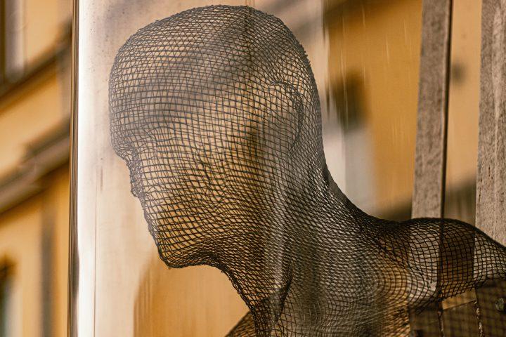 torso of wire mesh